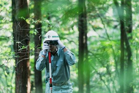 森林空間整備の写真