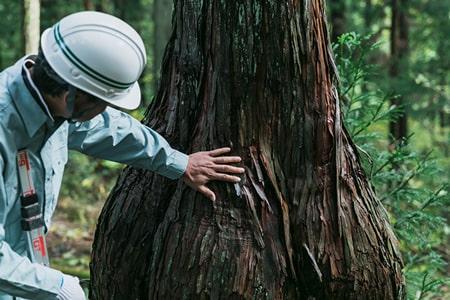 森林技術の研修・広報の写真