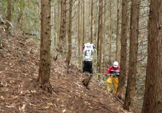 林道開設事業の全体計画 写真