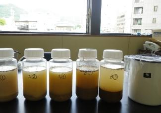 土壌酸性度試験 写真