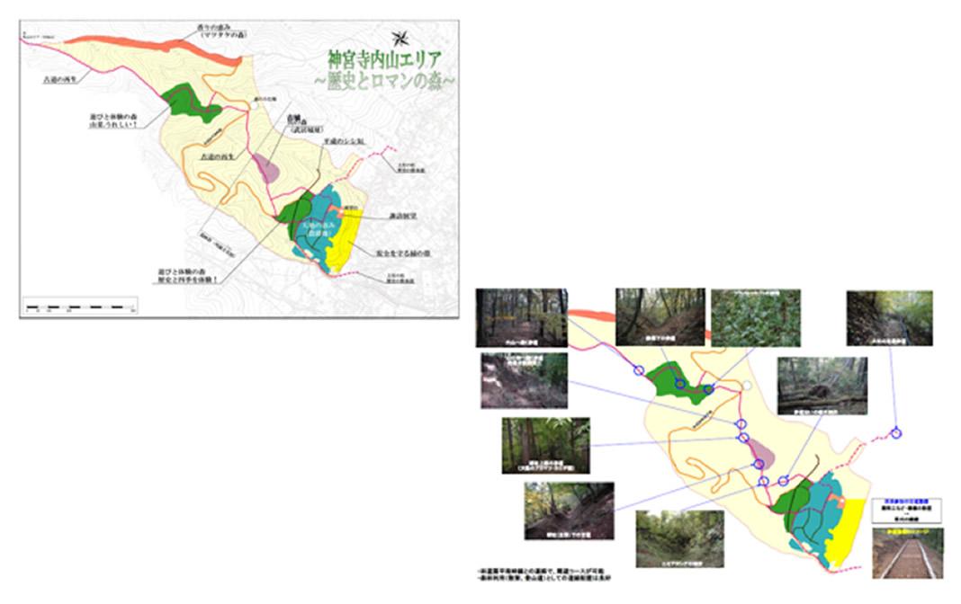 神宮寺100年の森林 「神宮寺区民憩いの森づくり」(諏訪市)の写真