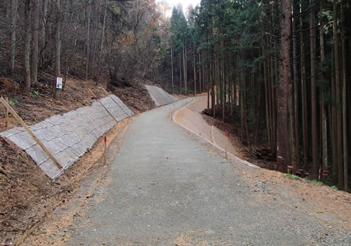 林道開設事業の写真