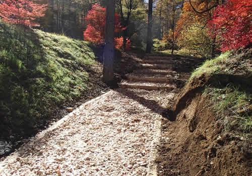 信州森の小径整備の写真
